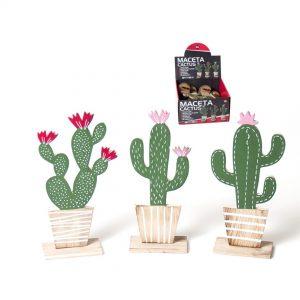 Saksija kaktus